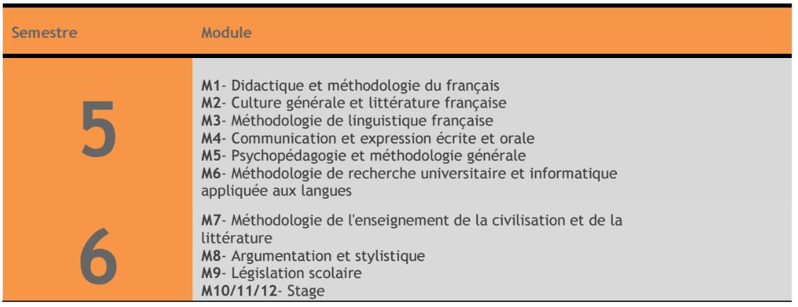 Contenu de la formation LP Enseignement du Français FP Errachidia