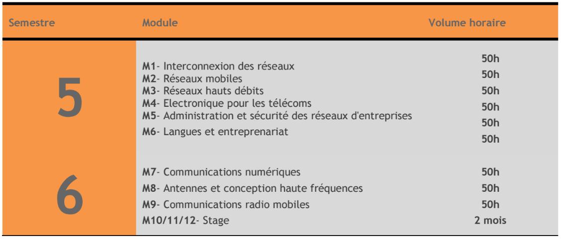 contenu de formation LP Télécoms et Réseaux FP Errachidia 2017